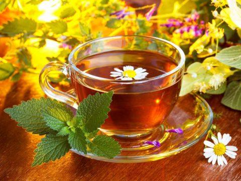 Кружка чая на фоне различных трав