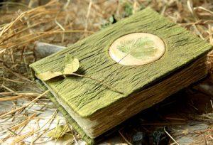 Книга травник
