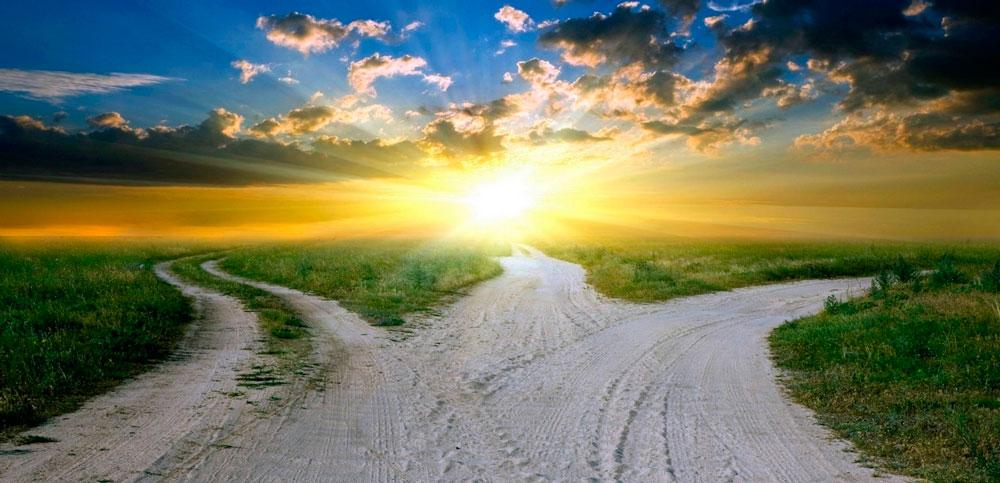 Развилка дорог