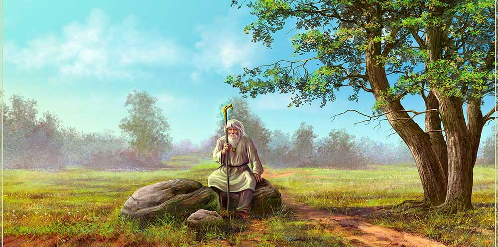 Травник - специалист по травам