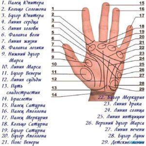 Линии на руке
