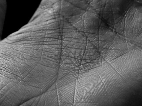 Линии на руке - значение, описание