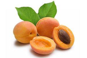 Польза плодов абрикоса