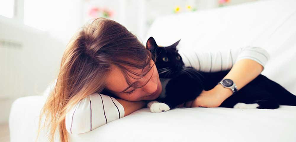 Техники защиты домашнего животного